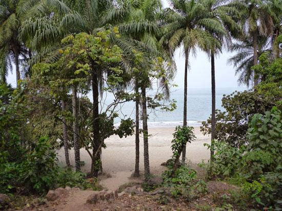 Ile de Kassa Guinée