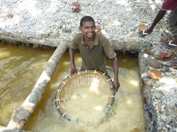Mineur tamisant l'illam, Sri Lanka