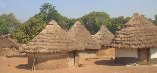 Cases en Guinée