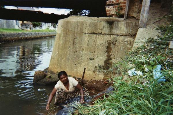 Chercheuse d'or, canal de Negombo, Sri Lanka