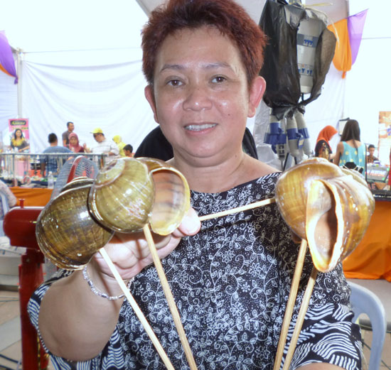 Coquilles d'escargots Bornéo